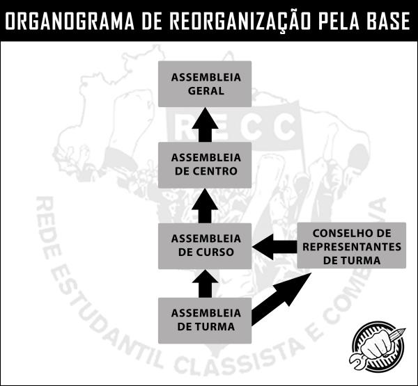 organograma-pela-base-externo